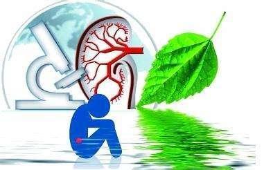 醫生忠告:多吃這5類食物養腎,而吃這4種食物易引發腎衰竭!