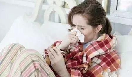 黃芪泡水,注意「四不喝」「五必喝」,每天喝一杯,疾病都趕走!
