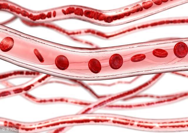 血管一堵,身體就容易垮掉,這2種食物能幫大忙!
