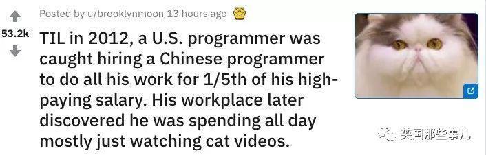 美國工程師用1/5的薪水把自己的工作外包給中國人每天耍廢年收800萬...:哭了